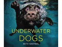 Autographed copy of Underwater Dogs by Seth Casteel