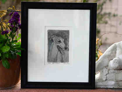 Greyhound Print of a Pen/Brush & Ink Drawing by C. Parke - Framed - Opening Bid Reduced