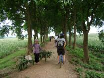 2 Spots on the Dragon's Trail Guided Bike Tour, Vietnam