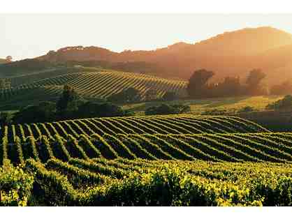 THE WINE COUNTRY - CALIFORNIA WINE COUNTRY EXPERIENCE