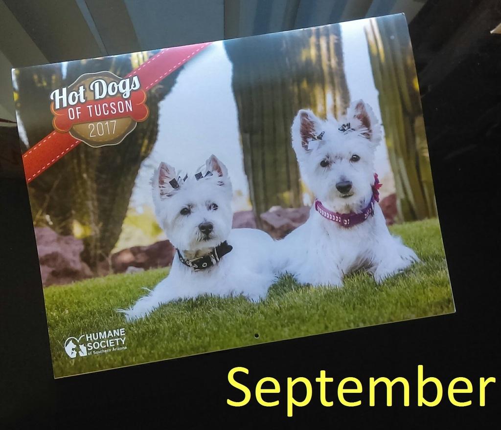 Hot dog coupons september 2018