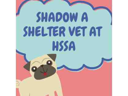 Shadow a Shelter Vet Experience
