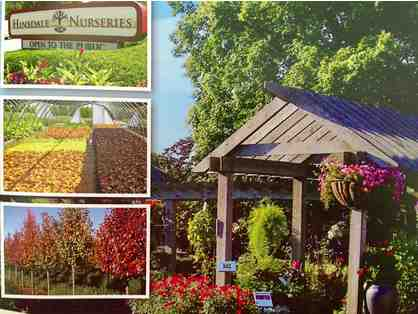 PLANTS, SHRUBS & TREES from Hinsdale Nurseries $250 GC