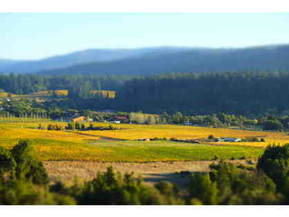 Anderson Valley Wine Country Weekend for Two, Anderson Valley Winegrowers Assoc., Philo