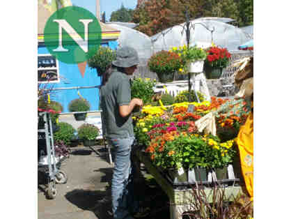 Nunan Florist & Greenhouses $60 Gift Card