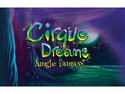 Four (4) Tickets to Cirque Dreams Jungle Fantasy at Mohegan Sun Arena w/ Limo Transport