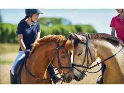 Memory Maker: Horseback Riding and Smores at the Morgan's for up to 3 People