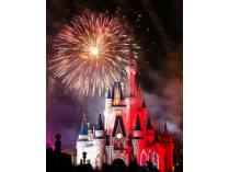 One Adult 1-Day Pass to Walt Disney World