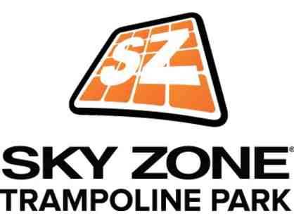 SkyZone Trampoline Park - Birthday Party for 10 Children