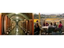 Gloria Ferrer Caves & Vineyards and Schug Carneros Estate Winery