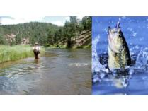 Rod & Reel Fishing Getaway with 3-Night Weekend Stay for (2)