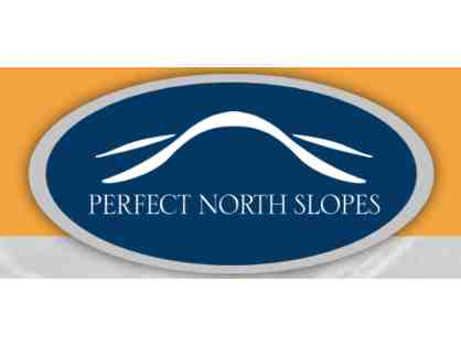 Two General Admission Lift Tickets at Perfect North Slopes (Lawrenceburg, IN)