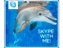 Skype with Winter - Can't come to see Winter? Let us bring Winter to you!
