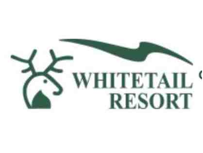 Two (2) Beginner Learn to Ski/Snowboard Packages at Whitetail Resort