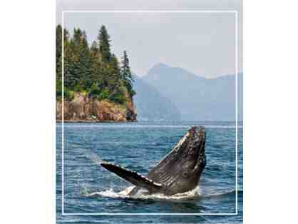 Alaska Cruise: The Call of the Wild