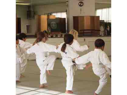 Pacific Martial Arts - 1 Month Unlimited Family Membership