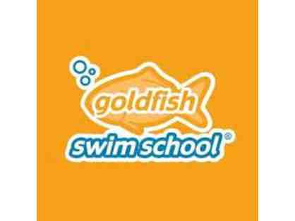 Goldfish Swim School/Roscoe Village - 2 Months of Swim Lessons and a 1 Year Membership
