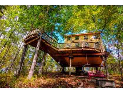 One night stay - TreeHOUSE built by PETE NELSON the TREEHOUSE Master! -Germantown, KY