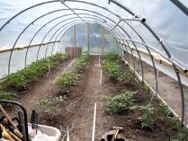 "Buy a Hoop House for The Arkansas Delta - ""Buy it Now"" Item"