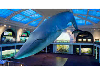 American Museum of Natural History: SuperSaver Admission for 4 People #2