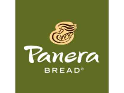 Free Panera for a Year