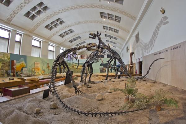Natural History Museum Of Utah Free Day
