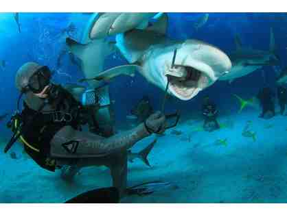 SCUBA Diving Adventure for Two with Stuart Cove's - Nassau, Bahamas