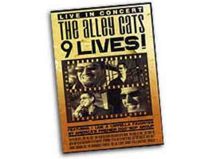 """The Alley Cats"" CD package - 6 autographed CD's + autographed DVD"