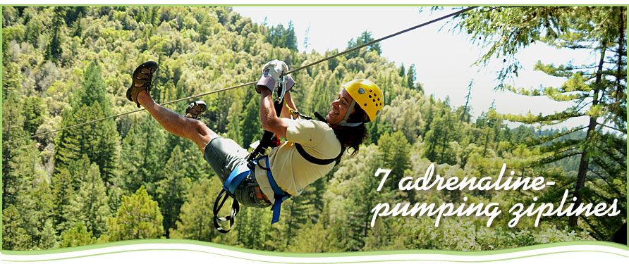 View Large Image & 2 Adult Eco-Adventure Tours w/Sonoma Canopy Tours: Forest Flight ...