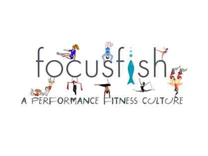 FOCUSfish - One Month Unlimited Aerial Classes