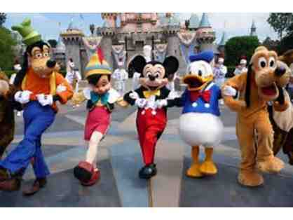 Disneyland/California Adventure 1-Day Park Hopper Tickets - Two Tickets